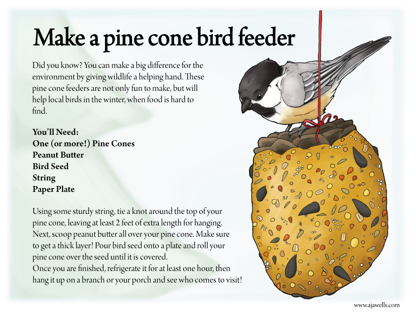 Make a Pine Cone Bird Feeder
